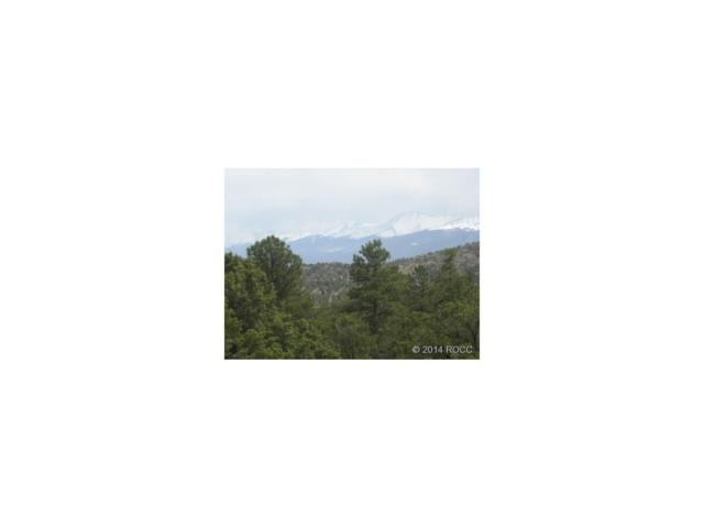 442 Red Feather Road, Cotopaxi, CO 81223 (MLS #C230611) :: 8z Real Estate