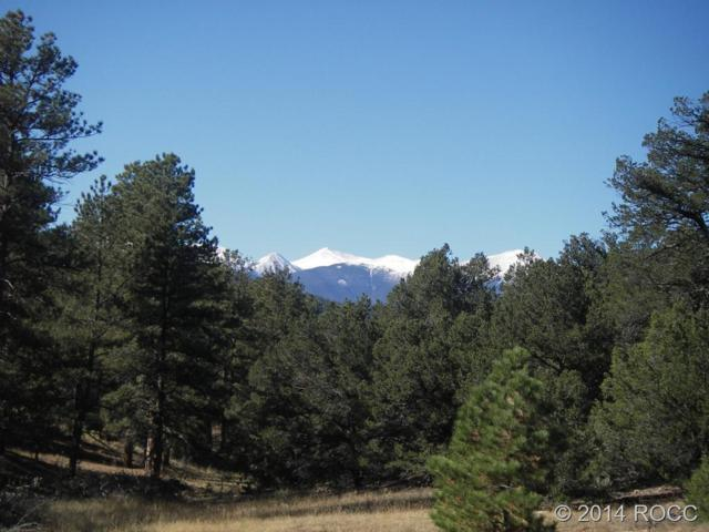 000 13TH Trail, Cotopaxi, CO 81223 (#C231632) :: Wisdom Real Estate