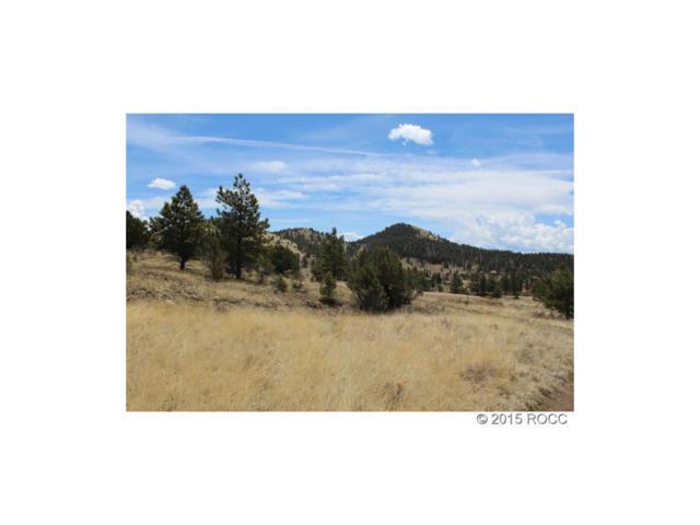 Tbd, Westcliffe, CO 81252 (MLS #C232640) :: 8z Real Estate