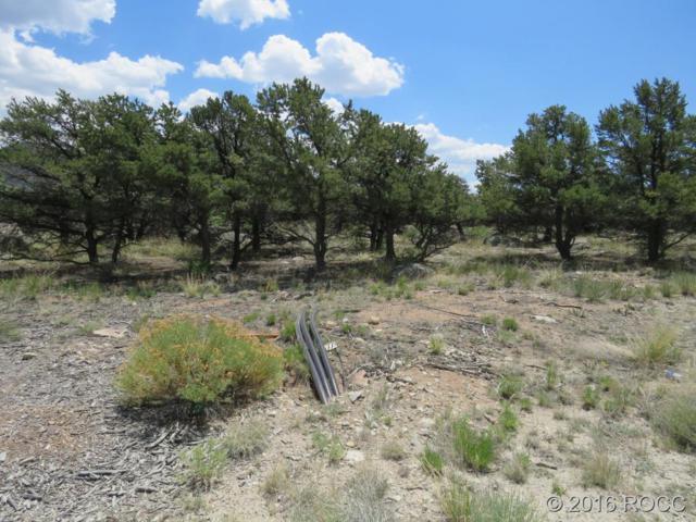 29973 Teal Run, Buena Vista, CO 81211 (#C235005) :: Structure CO Group
