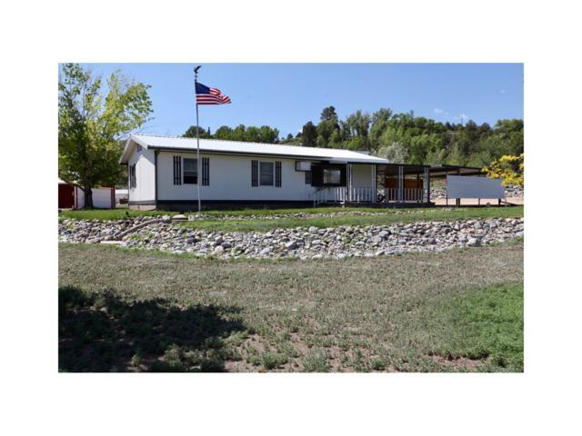204 Loop Drive, Howard, CO 81233 (MLS #C235179) :: 8z Real Estate