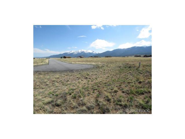 31351 Phil Court, Buena Vista, CO 81211 (#C235193) :: The DeGrood Team