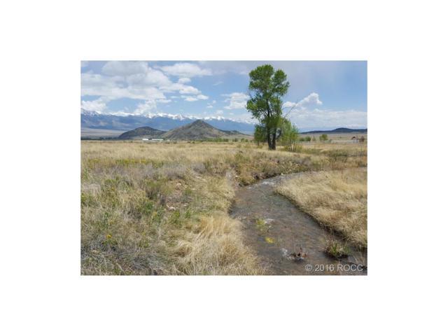 Antelope Trail, Villa Grove, CO 81155 (MLS #C235603) :: 8z Real Estate