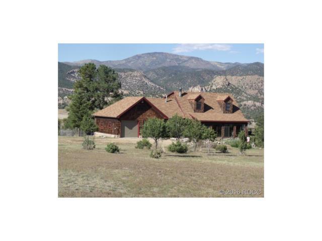 41 Shillelagh Place, Howard, CO 81233 (MLS #C236288) :: 8z Real Estate