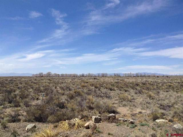 412C Camino Del Rey, Crestone, CO 81131 (#R692131) :: The Brokerage Group