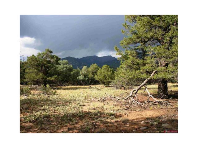 2063 Sandstone Way, Crestone, CO 81131 (MLS #R700660) :: 8z Real Estate