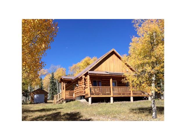 245 Adams Street, Jasper, CO 81144 (MLS #R722656) :: 8z Real Estate