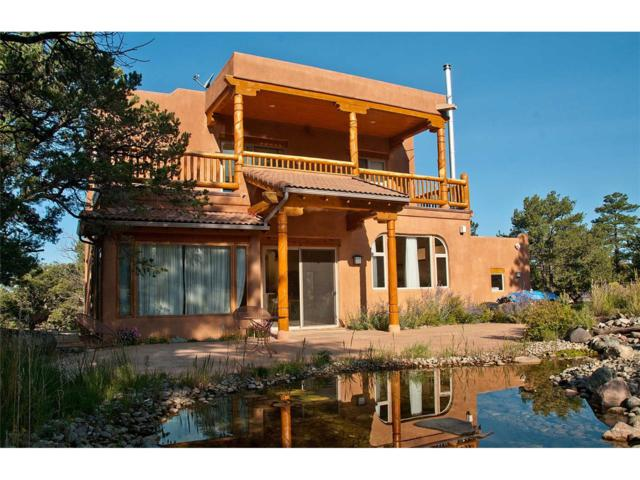 780 Palomino, Crestone, CO 81131 (#R724171) :: Structure CO Group