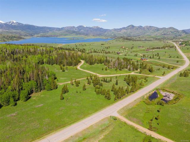 60330 Quail Drive, Clark, CO 80428 (#S141294) :: The DeGrood Team