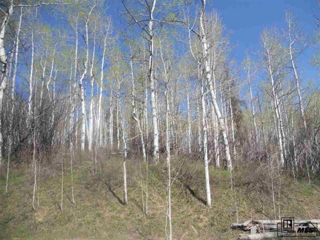 Hoch Eye Way, Oak Creek, CO 80467 (#S142218) :: The HomeSmiths Team - Keller Williams