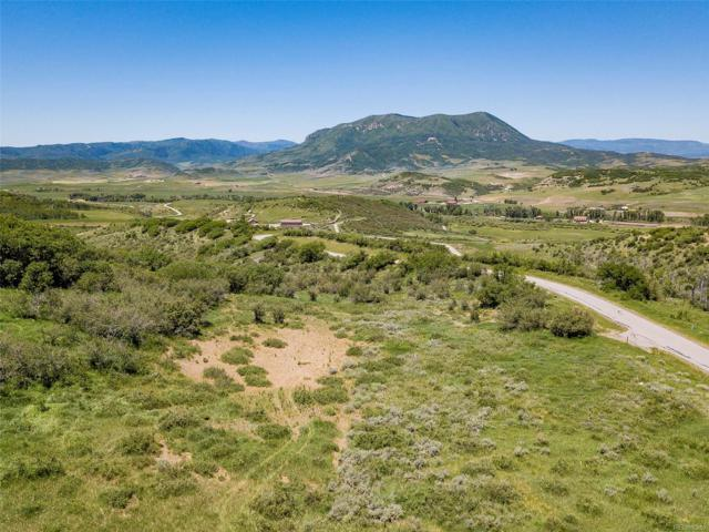 27180 Cowboy Up Road, Steamboat Springs, CO 80487 (#S161705) :: The DeGrood Team