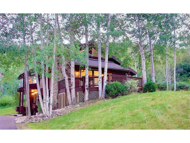 36846 Tree Haus Drive, Steamboat Springs, CO 80487 (#S171844) :: 5281 Exclusive Homes Realty