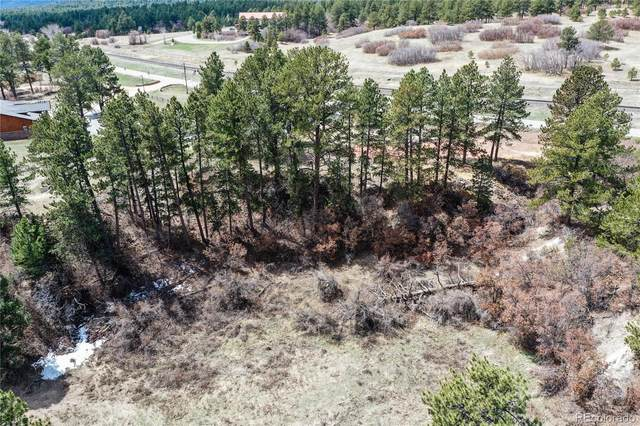 8516 Spruce Mountain Road, Larkspur, CO 80118 (#9047148) :: The DeGrood Team