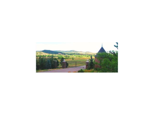 6120 Old Banbury, Lot 6 Lane, Sedalia, CO 80135 (MLS #1039050) :: 8z Real Estate