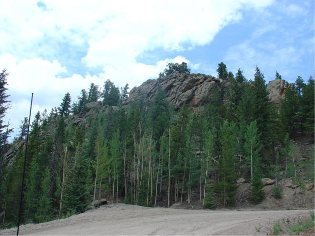 0 Blue Valley Acres, Idaho Springs, CO 80452 (MLS #1113681) :: 8z Real Estate