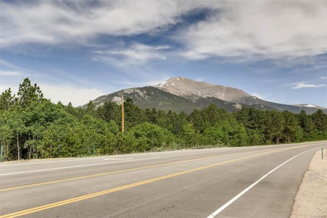 182 County Road 84W, Allenspark, CO 80510 (#1580980) :: Wisdom Real Estate