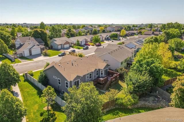 201 Aspen Grove Way, Severance, CO 80550 (#1625324) :: Kimberly Austin Properties