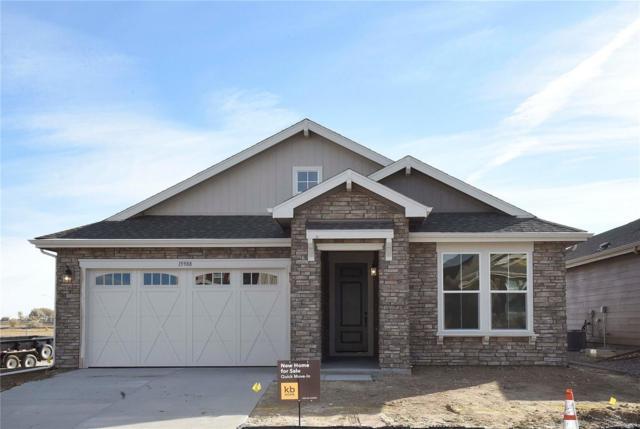 15988 Saint Paul Street, Thornton, CO 80602 (#1652689) :: Bring Home Denver