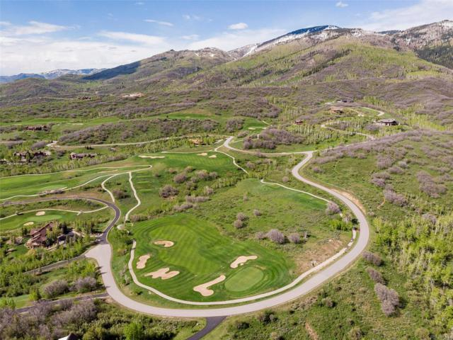 33900 Canyon Court, Steamboat Springs, CO 80487 (MLS #1767138) :: 8z Real Estate