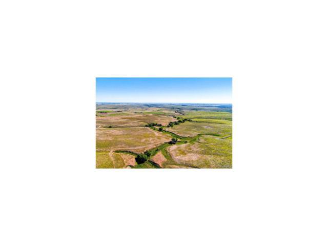 9000 Sun Country Drive, Elizabeth, CO 80107 (MLS #1830857) :: 8z Real Estate