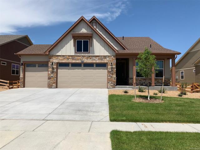 15573 Syracuse Way, Thornton, CO 80602 (MLS #1921507) :: 8z Real Estate