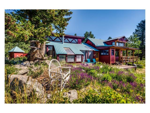 748 Pine Glade Road Msr, Nederland, CO 80466 (MLS #1981323) :: 8z Real Estate