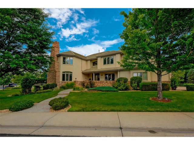 291 Fairchild Drive, Highlands Ranch, CO 80126 (MLS #2019295) :: 8z Real Estate