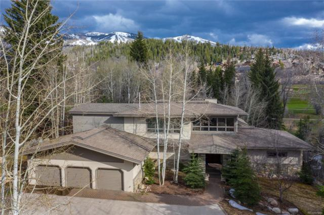 675 Meadowbrook Circle, Steamboat Springs, CO 80487 (MLS #2094570) :: 8z Real Estate