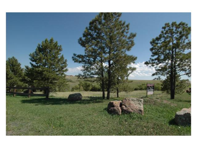 50 Skyhawk Way, Parker, CO 80138 (#2165159) :: The DeGrood Team