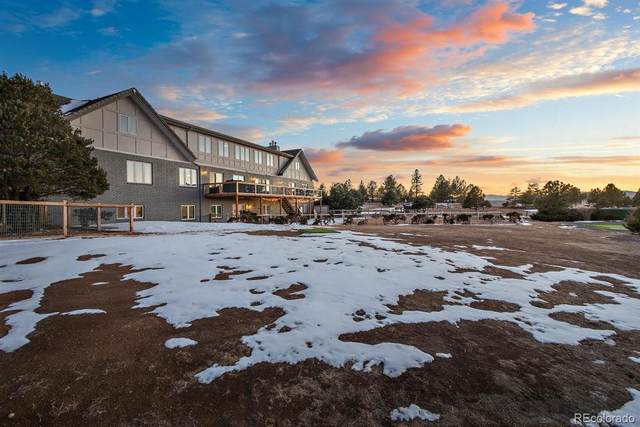 8447 Burning Tree Drive, Franktown, CO 80116 (#2249604) :: The Colorado Foothills Team | Berkshire Hathaway Elevated Living Real Estate