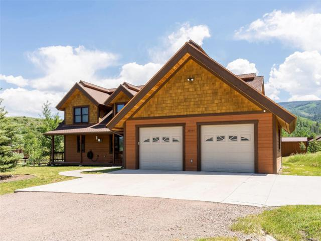 30540 Ormega Way, Oak Creek, CO 80467 (#2334832) :: Wisdom Real Estate