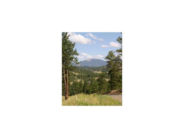 32333 San Luis Peak Trail, Pine, CO 80470 (MLS #2339861) :: 8z Real Estate