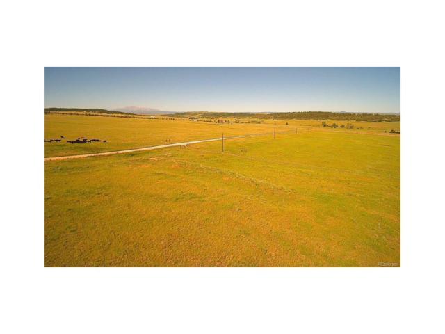 State Highway 83, Franktown, CO 80116 (MLS #2419913) :: 8z Real Estate