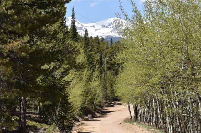 97 Saint Vrain Trail, Ward, CO 80481 (#2427750) :: Wisdom Real Estate