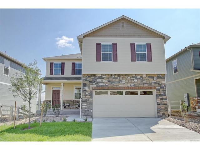 2168 Shadow Creek Drive, Castle Rock, CO 80104 (MLS #2466830) :: 8z Real Estate