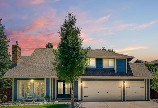 8234 S Niagara Court, Centennial, CO 80112 (#2591422) :: The Peak Properties Group