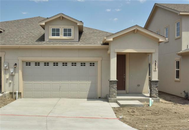5877 Wild Rye Drive, Colorado Springs, CO 80919 (#2626927) :: Bring Home Denver
