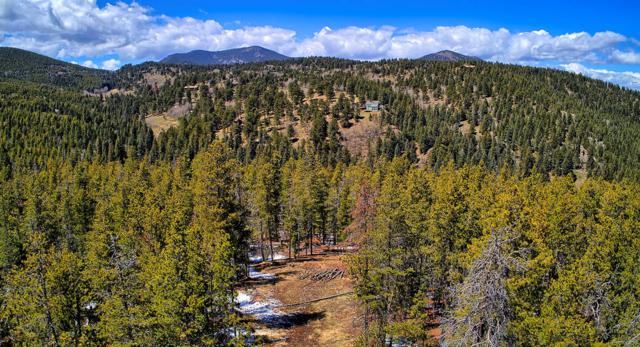 2 Mountain Estate Drive, Evergreen, CO 80439 (#2642922) :: The City and Mountains Group