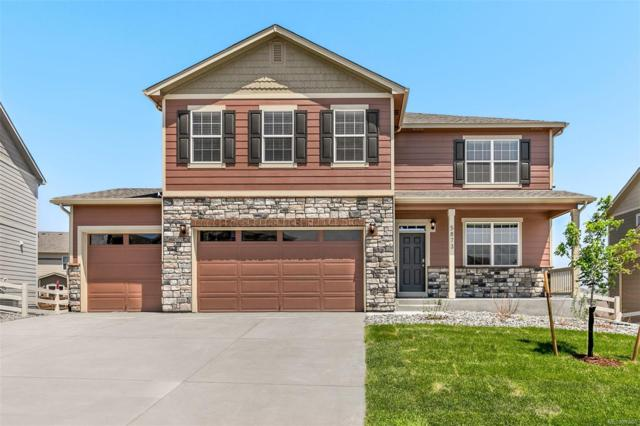 5873 Point Rider Circle, Castle Rock, CO 80104 (MLS #2647045) :: 8z Real Estate