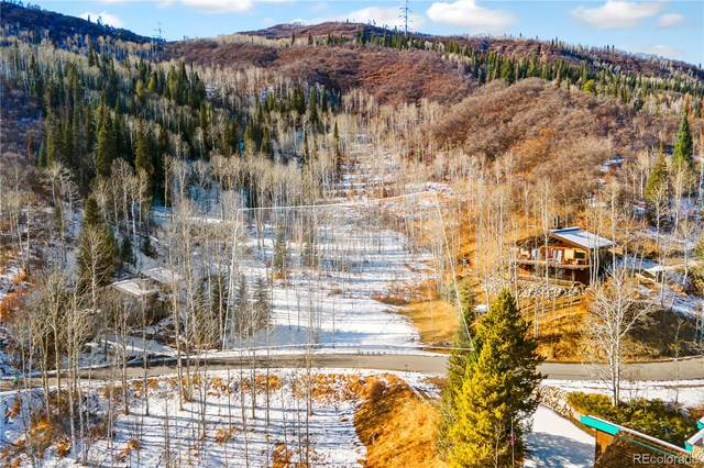 36867 Tree Haus Drive, Steamboat Springs, CO 80487 (MLS #2658857) :: The Sam Biller Home Team