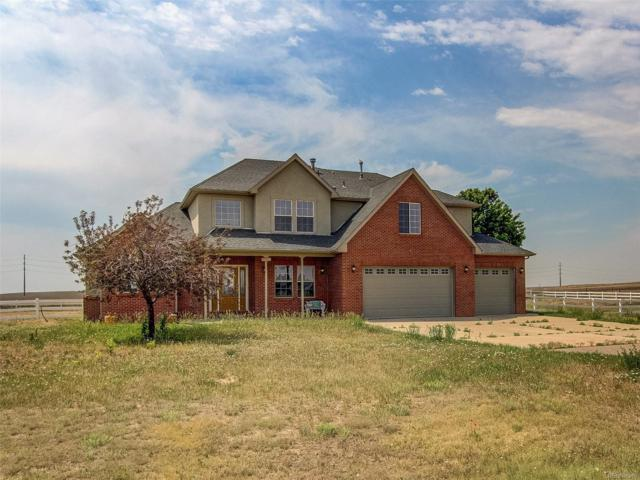 30900 E 145th Avenue, Brighton, CO 80603 (#2690711) :: The HomeSmiths Team - Keller Williams