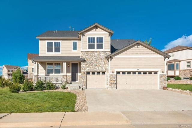 719 Dublin Place, Castle Rock, CO 80104 (MLS #2724661) :: 8z Real Estate