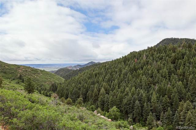 14354 Cotton Trail, Littleton, CO 80127 (#2765309) :: Compass Colorado Realty
