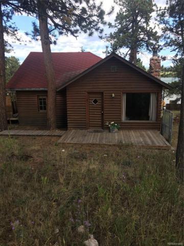 104 Frank Road, Pine, CO 80470 (#2788004) :: Wisdom Real Estate