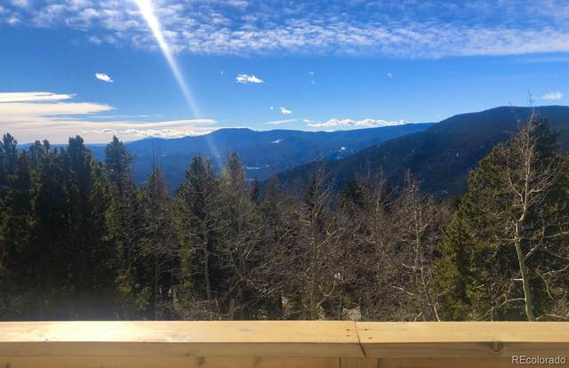 45 Lodgepole Drive, Evergreen, CO 80439 (MLS #2878320) :: 8z Real Estate