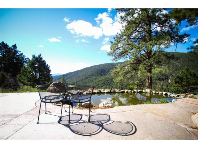 23906 Bent Feather Road, Conifer, CO 80433 (MLS #2884327) :: 8z Real Estate