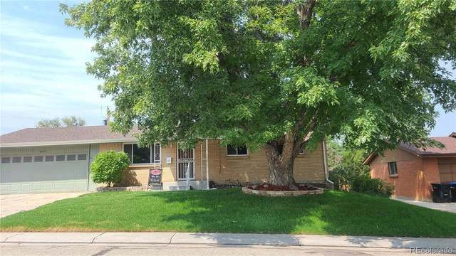 6651 Harlan Street, Arvada, CO 80003 (MLS #2890871) :: Clare Day with Keller Williams Advantage Realty LLC