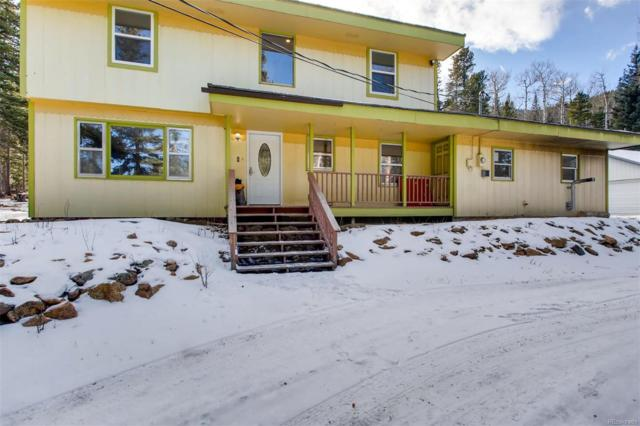 88 Valley View Drive, Idaho Springs, CO 80452 (#2935913) :: Bring Home Denver