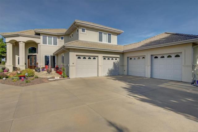 9659 Blanketflower Lane, Parker, CO 80138 (#2969143) :: The DeGrood Team