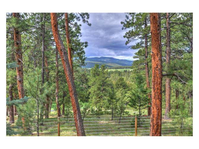 32296 Buffalo Park Road, Evergreen, CO 80439 (MLS #3066294) :: 8z Real Estate